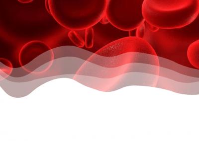 Health Works - Live Blood Analysis